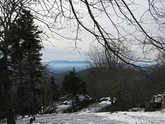 Grandfather Mountain vista