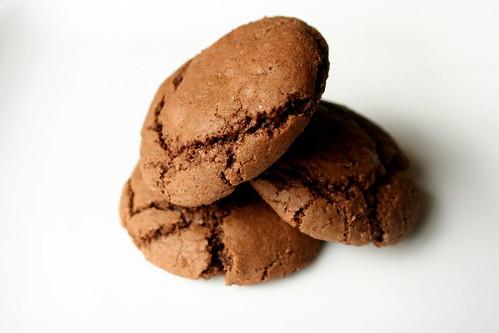 Mexican Hot Chocolate cookies - These Mexican hot chocolate cookies get their kick from cinnamon and a touch of cayenne pepper. The pepper adds a bit of warmth to the back of the throat.