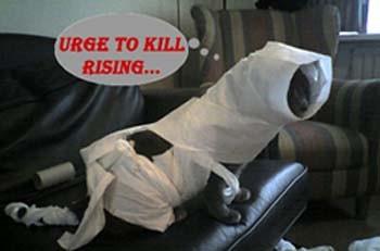 urge to kill rising