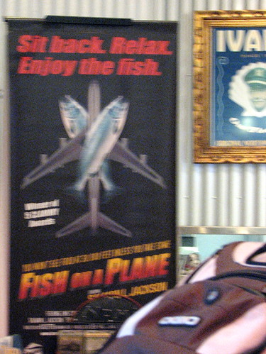 Fish on a Plane