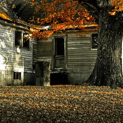 20091216_nhendrix_oldhome-1 (nhendrixsc) Tags: architecture autumn concepts holladay northamerica seasons type tennessee unitedstates worldlocation backdoor blackwhite building continent home house memories old oldfashioned peaceful photography residentialbuilding rundown waterwell