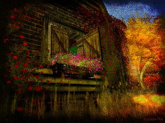 Rustic Cottage (ToySoldier98) Tags: autumn fall nature farmhouse landscape scenery cottage sl secondlife embryo rucott