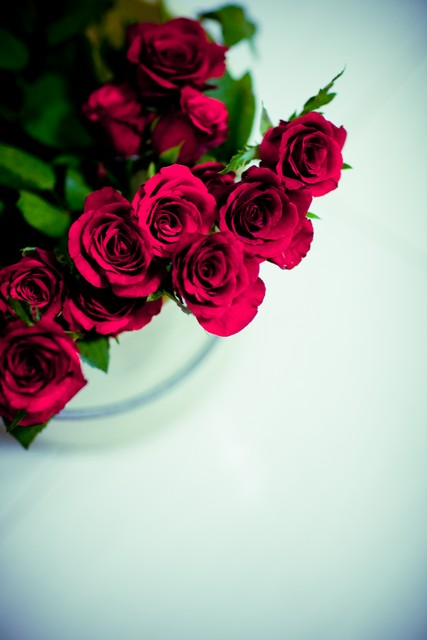 pretty hand bouquet of deep red roses
