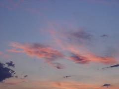 Azul rojo y dorado (andaluza catalana) Tags: sol atardecer paisaje colores bosque cielo catalunya puestadesol belleza lleida oscuridad colorrojo colordorado colorazul lerída aireenara