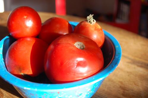 Grandpa E's tomatoes