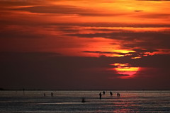 Sunset over the Wadden Sea (g_heyde) Tags: germany northsea lowtide nordsee mudflats watt mudflat ebbe tidelands cuxhaven wattenmeer niedersachsen waddensea platinumheartaward nationalparkwattenmeer 5dmkii