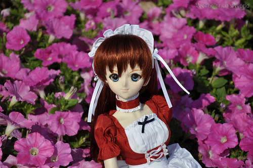 Dollfie Dream DD娃娃 Asuka アスカ