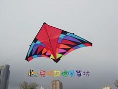 前往賣場~3米大三角風箏(3)