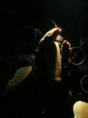 Moray Eels (stonethecrow) Tags: australia seacreatures sydneyaquarium