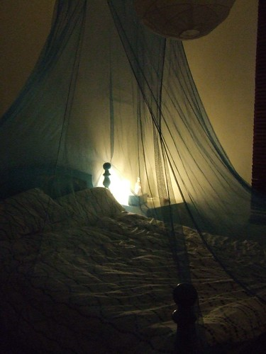 Bed canopy 2 by you.