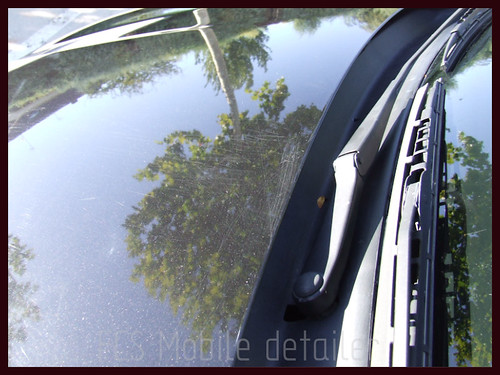 Seat Ibiza 2004 negro mágico-023