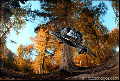 Etienne (Razorimages.com) Tags: autumn bike automne mountainbike downhill trail mtb freeride vtt razor singletracks razorimages razorimagescom