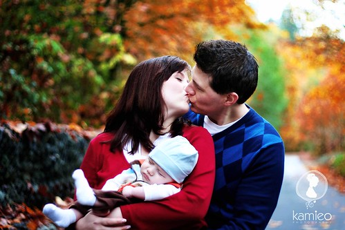 Blogging : The C Family