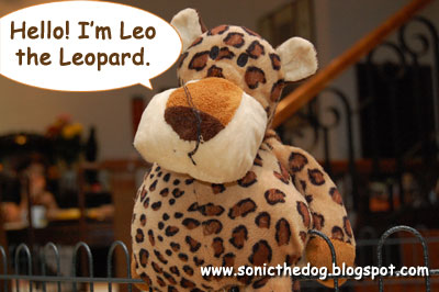 Leo the Leopard