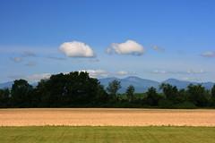 Ferrisburg fields (Brian Aslak) Tags: trees usa clouds rural vermont farm newengland adirondacks hills fields northamerica ferrisburg addisoncounty
