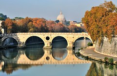 Morning glory (Capitan Mirino ( il Tartarughino )) Tags: bridge trees italy roma reflection water alberi river fiume ponte cupola dome tevere acqua sanpietro lazio pontesisto riflesso smrgsbord yourcountry reflectionslovers