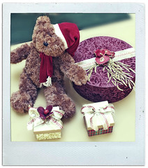 Teddy Bear (Rapha-chan) Tags: camera xmas brazil love photoshop polaroid teddy sopaulo decoration teddybear 2009  rapha    xmasdecoration  shoppingeldorado canoneosdigitalrebelxs