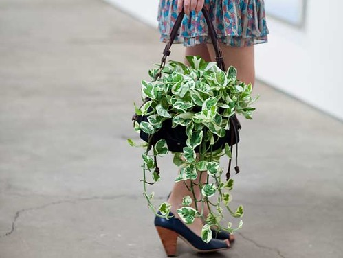 4167920567 0cb33299da Woolly Vagabond: A Purse for take your plant to MOCA day