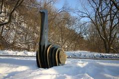 IMG_1764 (chris.el.ryan) Tags: sculpture goose plywood sheetmetal eastriverflats