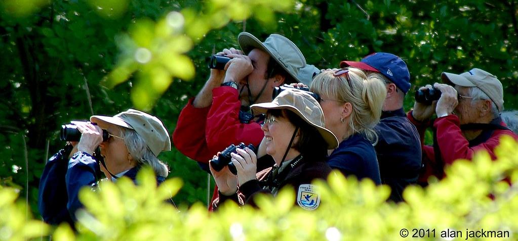 Over There! Scenes from John Heinz Wildlife Refuge