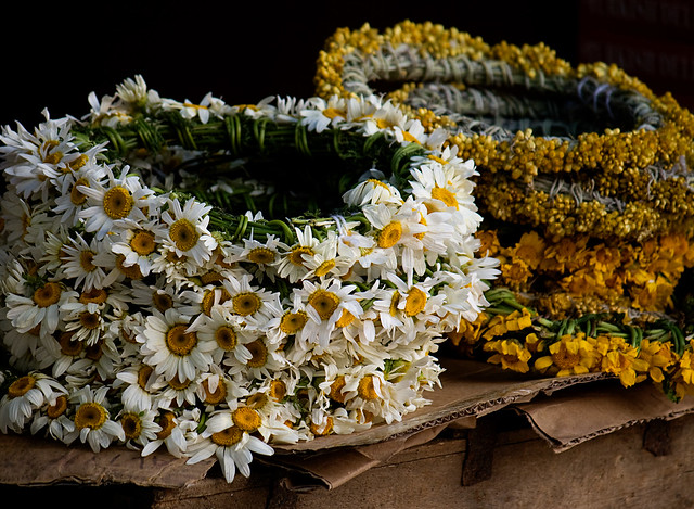 sirince - flower wreath