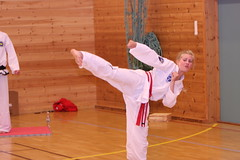 taekwon do kick