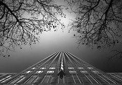 Grown (vulture labs) Tags: architecture art fineart fine workshop photography bw