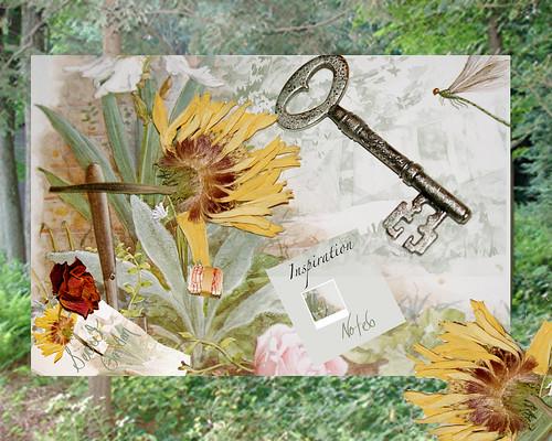 garden-inspiration