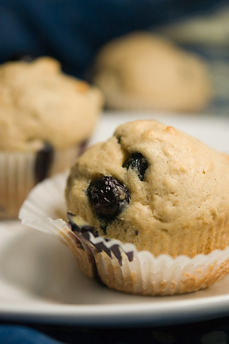 07.19.2009: maple blueberry muffins (by bookgrl)