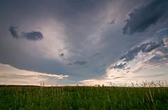 Clearing (baldwinm16) Tags: sunset sky storm nature clouds illinois scenic wildflowers naperville blackeyedsusan springbrook springbrookprairie springbrookprairieforestpreserve illinoisfoestpreserve
