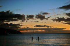 Endless Summer (Scott Barlow) Tags: ocean park sunset sky beach clouds lens 50mm harbor nikon oahu northshore jpg nikkor haleiwa sup endlesssummer cominghome d300 f14d 5photosaday 1xp standuppaddle lokoeapond