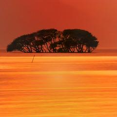 001 (nene-aneON - OFF)) Tags: soe goldenratio abigfave abigfav colorphotoaward saariysqualitypictures worldsartgallery redmatrix imagemusicsbest oracoob selectbestfavorites trolledproud coppercloudsilvernsun