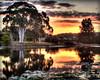 Lake 4 Sippy Sunset (dazza17 - DJ) Tags: downs sunshinecoast scapes sippy anawesomeshot daryljames thecelebrationoflife moonbeachsunsetslongexposure dazza17 daryljamesphotograph