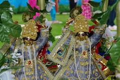 Janmashtami at Bhaktivedanta Manor, 2009 (Janardan das) Tags: england cooking festival yoga religion culture lifestyle books celebration bazaar spiritual krsna kirtan hindu indiancuisine prabhupada veda georgeharrison harekrishna ayurveda aldenham transcendental vedic ahimsa iskcon bhakti prasadam janmashtami bhaktivedantamanor harerama ayur krishnasbirthday spiritualbooks ekadasi culinaryskills spiritualscience iskconuk booksdistribution jaladuta bhaktisidhanttasarasvati