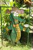 Crocodile Farm Signage (adcristal) Tags: animal sign reptile farm philippines cartoon nikond70s signage crocodile croc puertoprincesa palawan crocodilefarm barangay irawan tamron1750mmf28 palawanwildliferescueandconservationcenter
