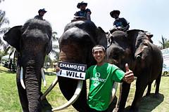 """Obama""and Elephants ""โอบามา"" และช้าง (Chang(e) Caravan Day 8)"