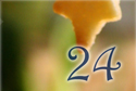 22_dia_24