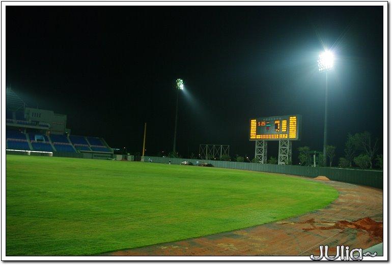 國際棒球場 (6)