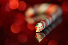 candy canekeh:  335/365 (helen sotiriadis) Tags: christmas red white holiday macro reflection green cane closeup canon published dof candy bokeh sugar depthoffield 365 hbw canoneos40d toomanytribbles