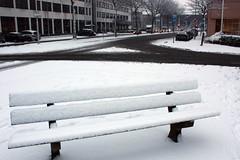 Primeira neve da temporada 09-10 Holanda