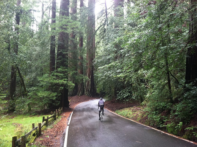 Shop Ride: Big Basin, California