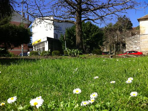 Chega a primavera!!!