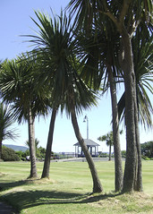 Rothesay Palm Trees (DerickCarss) Tags: trees tree green island scotland clyde palm course putting isle eilean firth bute rothesay bhòid