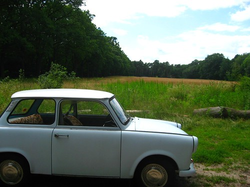 dbant, east german car from the 1960s