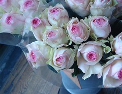 Citarella Pink Roses (such pretty things) Tags: pink flowers blue roses ny newyork flower rose market gourmet bunch buds bouquet easthampton citarella