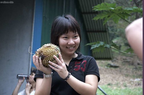 durian_19