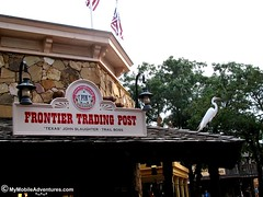 IMG_1213-WDW-MK-Frontier-trading-post-egret