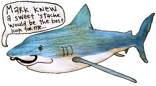 shark for mark
