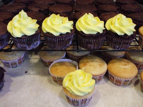 Cupcakes 09 006