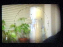 Through the Viewfinder - Out of Focus